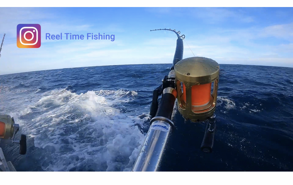Part 2 - Day 12 Giant Southern Bluefin Tuna - Port Fairy